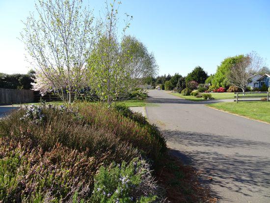 1670 Prairie Hawke Ct, Mckinleyville, CA 95519
