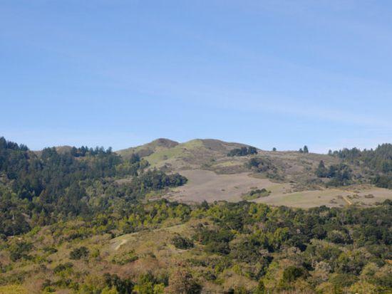 15 Coyote Hl, Portola Valley, CA 94028