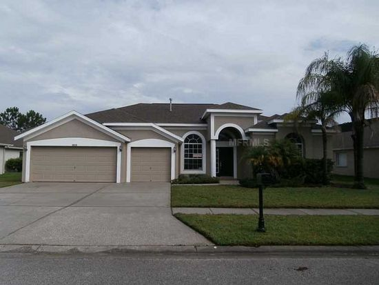 10231 Meadow Crossing Dr, Tampa, FL 33647