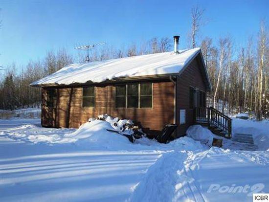 41255 Turtle Lake Rd, Bigfork, MN 56628
