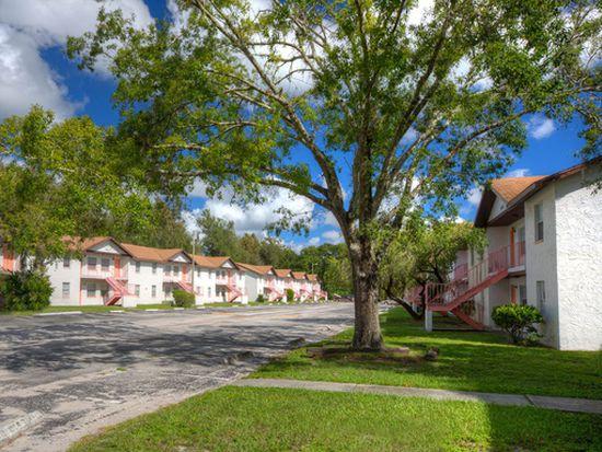 14331 Lucerne Dr, Tampa, FL 33613