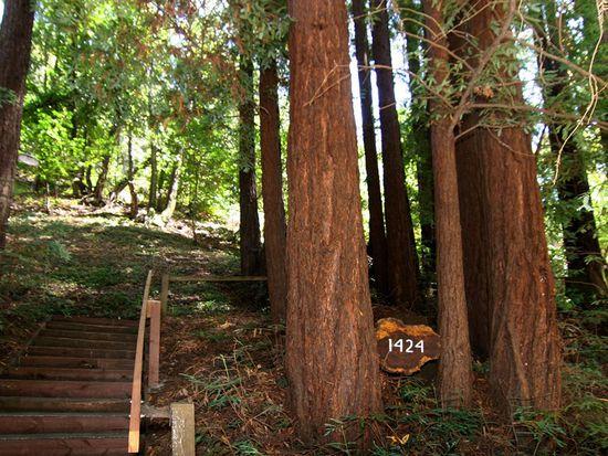 1424 Glen Canyon Rd, Santa Cruz, CA 95060