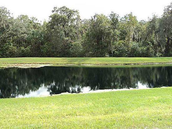 15943 Fishhawk View Dr, Lithia, FL 33547