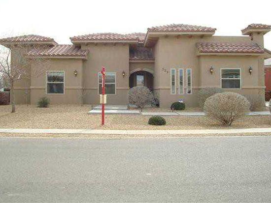 529 Via De Los Arboles, El Paso, TX 79932