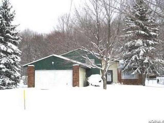 10057 Serene Ct, Twinsburg, OH 44087