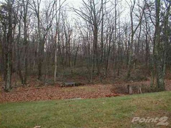 null bed null bath Vacant Land at 81 Anawana Lake Rd Monticello, NY, 12701 is for sale at 325k - google static map