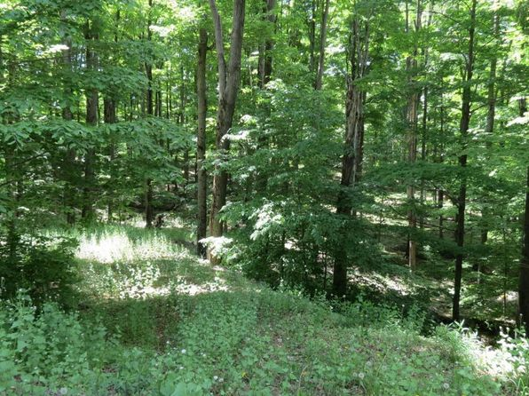 null bed null bath Vacant Land at 2515 &2516 Rocky Mountain Dr Greentown, PA, 18426 is for sale at 30k - 1 of 3