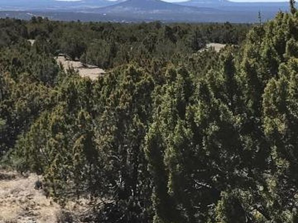 null bed null bath Vacant Land at  Lot 20 Idlewild Rnch Concho, AZ, 85924 is for sale at 40k - 1 of 6