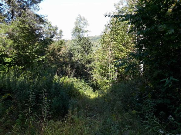 null bed null bath Vacant Land at 0 Dave Brown Mountain Rd Gilboa, NY, 12076 is for sale at 40k - 1 of 15
