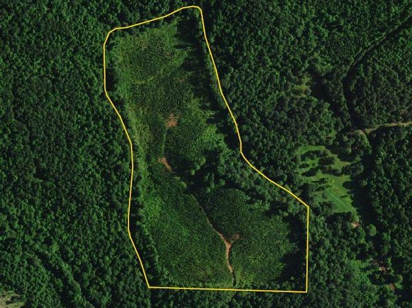 null bed null bath Vacant Land at  Haynes Mountain Rd Delta, AL, 36258 is for sale at 43k - 1 of 2