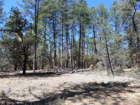 null bed null bath Vacant Land at 200 S Fred's Rd Young, AZ, 85554 is for sale at 129k - 1 of 3