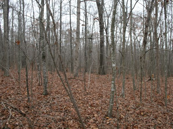 null bed null bath Vacant Land at 0 Spring Rd Spring City, TN, 37381 is for sale at 4k - 1 of 7