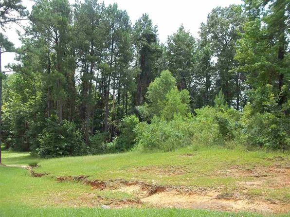 null bed null bath Vacant Land at 0202010 St. Charles Ave Florence, MS, 39073 is for sale at 20k - google static map