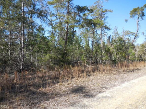 null bed null bath Vacant Land at 850 SE 146th Ter Williston, FL, 32696 is for sale at 6k - 1 of 6