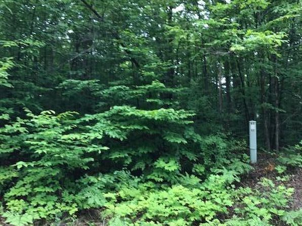 null bed null bath Vacant Land at 15580 Wurm Rd Wolverine, MI, 49799 is for sale at 9k - 1 of 3