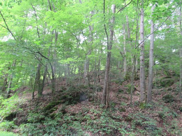 null bed null bath Vacant Land at  Tbd Moonshine Mtn Burnsville, NC, 28714 is for sale at 10k - 1 of 9