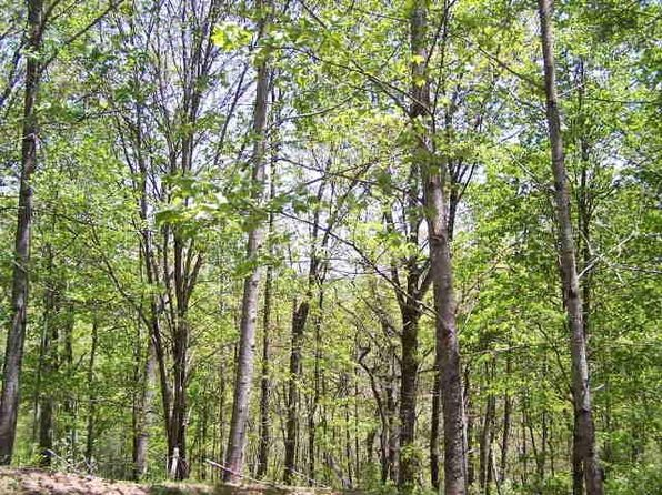 null bed null bath Vacant Land at 0 Ridgepole Part Sky Valley, GA, 30537 is for sale at 90k - 1 of 8