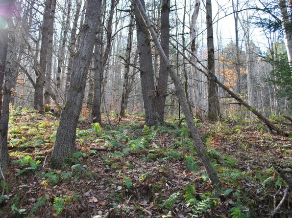 null bed null bath Vacant Land at 153 W Chenango Rd Castle Creek, NY, 13744 is for sale at 93k - 1 of 12