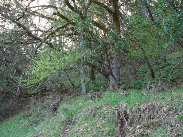 null bed null bath Vacant Land at  Black Oak Dr Roseburg, OR, 97471 is for sale at 82k - google static map