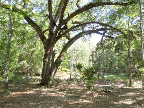 null bed null bath Vacant Land at 1AC NW 83 Ct Rd Ocala, FL, 34482 is for sale at 17k - 1 of 11
