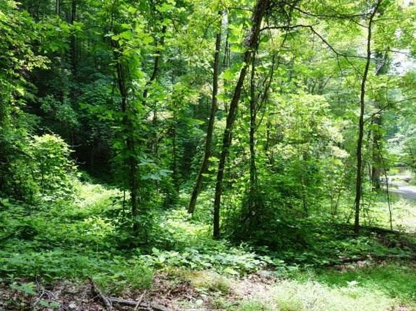 null bed null bath Vacant Land at  Lot 1-4 Bear Cove Cir Bryson City, NC, 28713 is for sale at 18k - 1 of 10