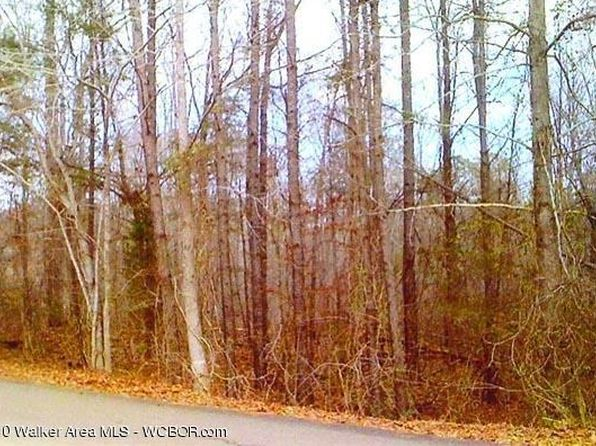 null bed null bath Vacant Land at 1102 Hickory Hill Ln Jasper, AL, 35504 is for sale at 175k - google static map