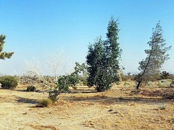 null bed null bath Vacant Land at 18600 186 St E Llano, CA, 93591 is for sale at 8k - 1 of 12