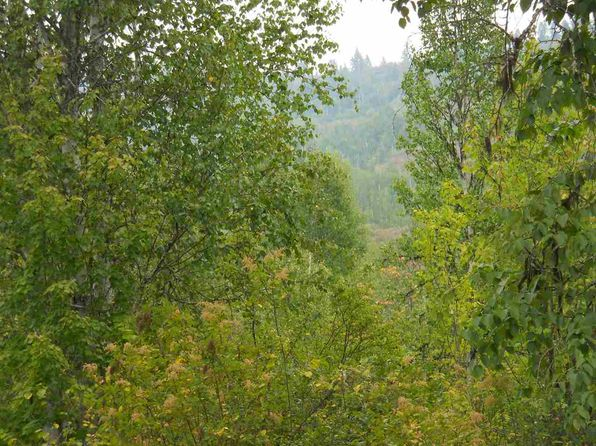 null bed null bath Vacant Land at 1117 Catamount Ridge Ln Cusick, WA, 99119 is for sale at 40k - 1 of 11