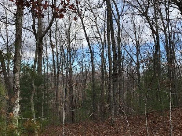 null bed null bath Vacant Land at 9 Cobb Mountain Rd Blairsville, GA, 30512 is for sale at 15k - 1 of 2