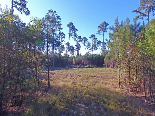 null bed null bath Vacant Land at 00 Pvt Rd Jasper, TX, 75951 is for sale at 30k - 1 of 13