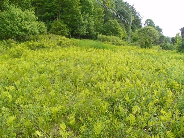 null bed null bath Vacant Land at 0 State Hwy Franklin, NY, 13775 is for sale at 46k - 1 of 15