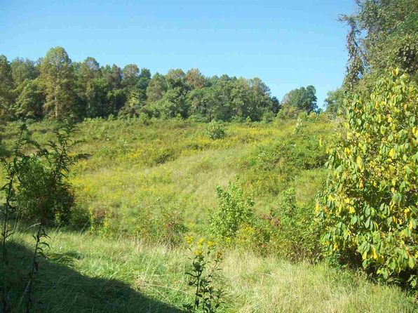 null bed null bath Vacant Land at  Delmas McCoy Rd Sneedville, TN, 37869 is for sale at 130k - 1 of 16