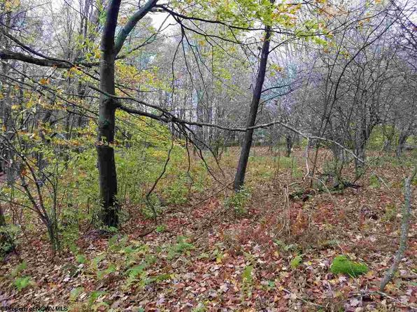 null bed null bath Vacant Land at 00 Mt. Zion Ln Harman, WV, 26270 is for sale at 40k - 1 of 14