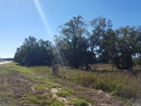 null bed null bath Vacant Land at 0 N US Citra, FL, 32113 is for sale at 125k - 1 of 2