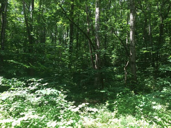 null bed null bath Vacant Land at 0 And 130 Mountain Dr Livingston, TN, 38570 is for sale at 10k - 1 of 3
