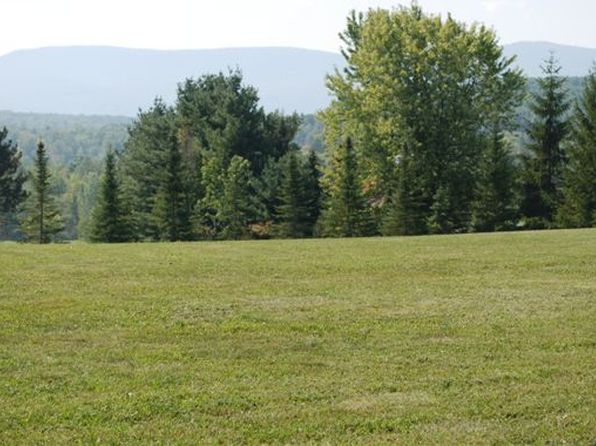null bed null bath Vacant Land at  Panorama Dr East Durham, NY, 12451 is for sale at 25k - 1 of 5