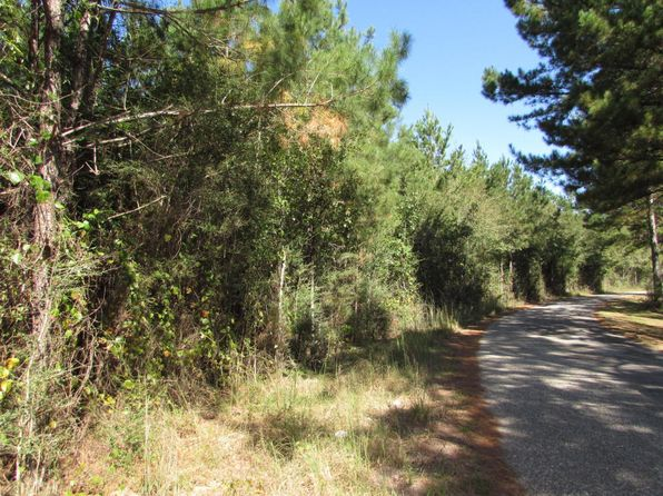 null bed null bath Vacant Land at 0 McCain Rd Foxworth, MS, 39483 is for sale at 59k - 1 of 9