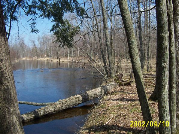 null bed null bath Vacant Land at 10366 Kings Ct Canadian Lakes, MI, 49346 is for sale at 10k - 1 of 7