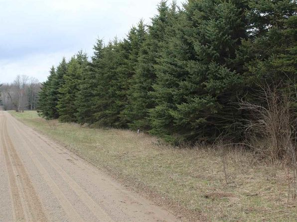 null bed null bath Vacant Land at 00 Burkett Rd Lake City, MI, 49651 is for sale at 10k - 1 of 10
