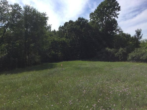 null bed null bath Vacant Land at 25TH Street Hopkins, MI, 49328 is for sale at 42k - 1 of 2