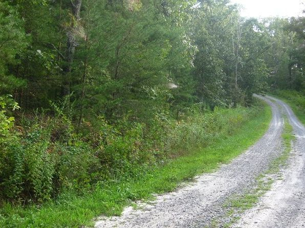 null bed null bath Vacant Land at LT 20 Crabapple Ln Mineral Bluff, GA, 30559 is for sale at 10k - 1 of 6