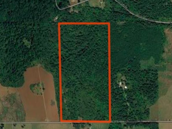 null bed null bath Vacant Land at 42172 Rodgers Mountain (Next To 80 Acres) Lp Scio, OR, 97374 is for sale at 350k - 1 of 7