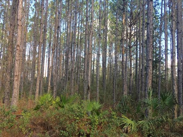 null bed null bath Vacant Land at SW Gary L Thomas Rd Mayo, FL, 32066 is for sale at 352k - 1 of 11
