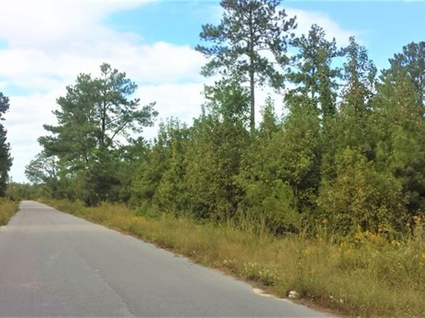 null bed null bath Vacant Land at 00 Clark St Santee, SC, 29142 is for sale at 40k - 1 of 4