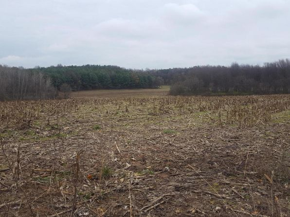 null bed null bath Vacant Land at  Grant Rd Shelby, MI, 49455 is for sale at 160k - 1 of 4