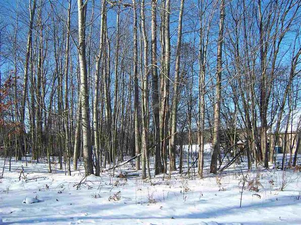 null bed null bath Vacant Land at  Maid Marian 42 Roscommon, MI, 48653 is for sale at 20k - 1 of 2