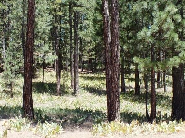 null bed null bath Vacant Land at 270 Gold Nugget Ln Blairsden, CA, 96106 is for sale at 55k - 1 of 7