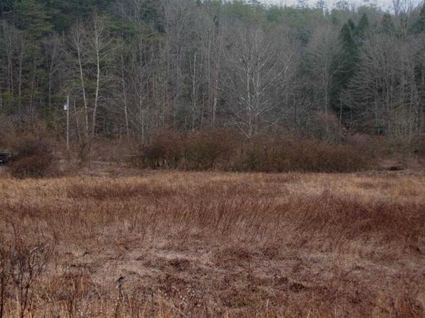 null bed null bath Vacant Land at  Bogard Bogard Rd Cosby, TN, 37722 is for sale at 22k - 1 of 3