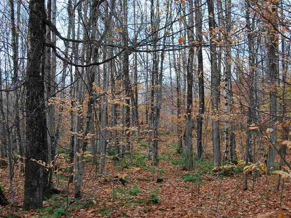 null bed null bath Vacant Land at  Tbd Delta Wetmore, MI, 49895 is for sale at 115k - 1 of 5