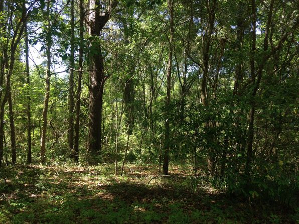 null bed null bath Vacant Land at  Roweling Oaks Ct Tallahassee, FL, 32303 is for sale at 45k - 1 of 4